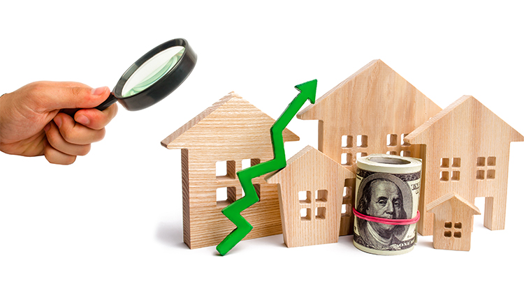 What is Really Happening With Home Prices